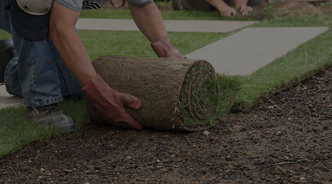 Port Angeles Lawn Care